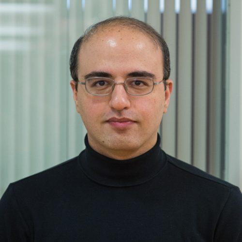 Reza Rajimehr